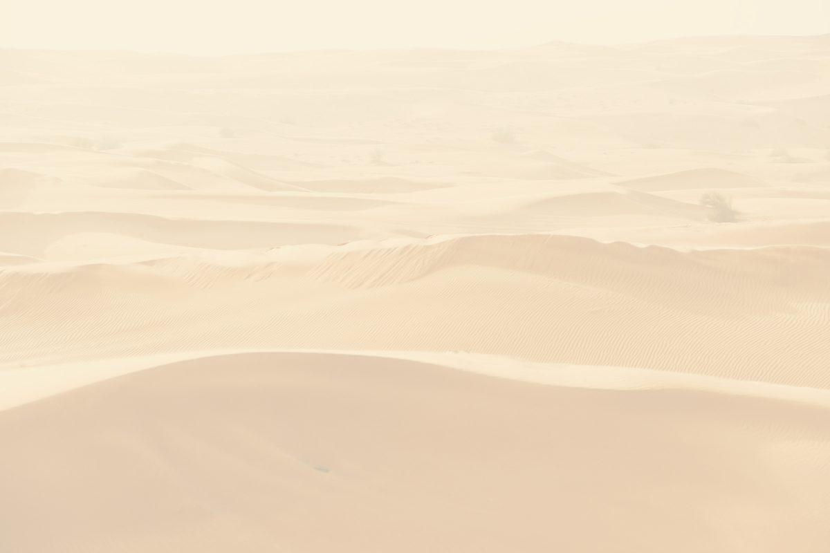 Desert Sand Back